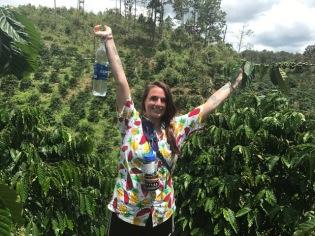 Coffee Plantation3