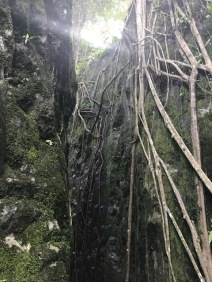 Waterfall 2-2